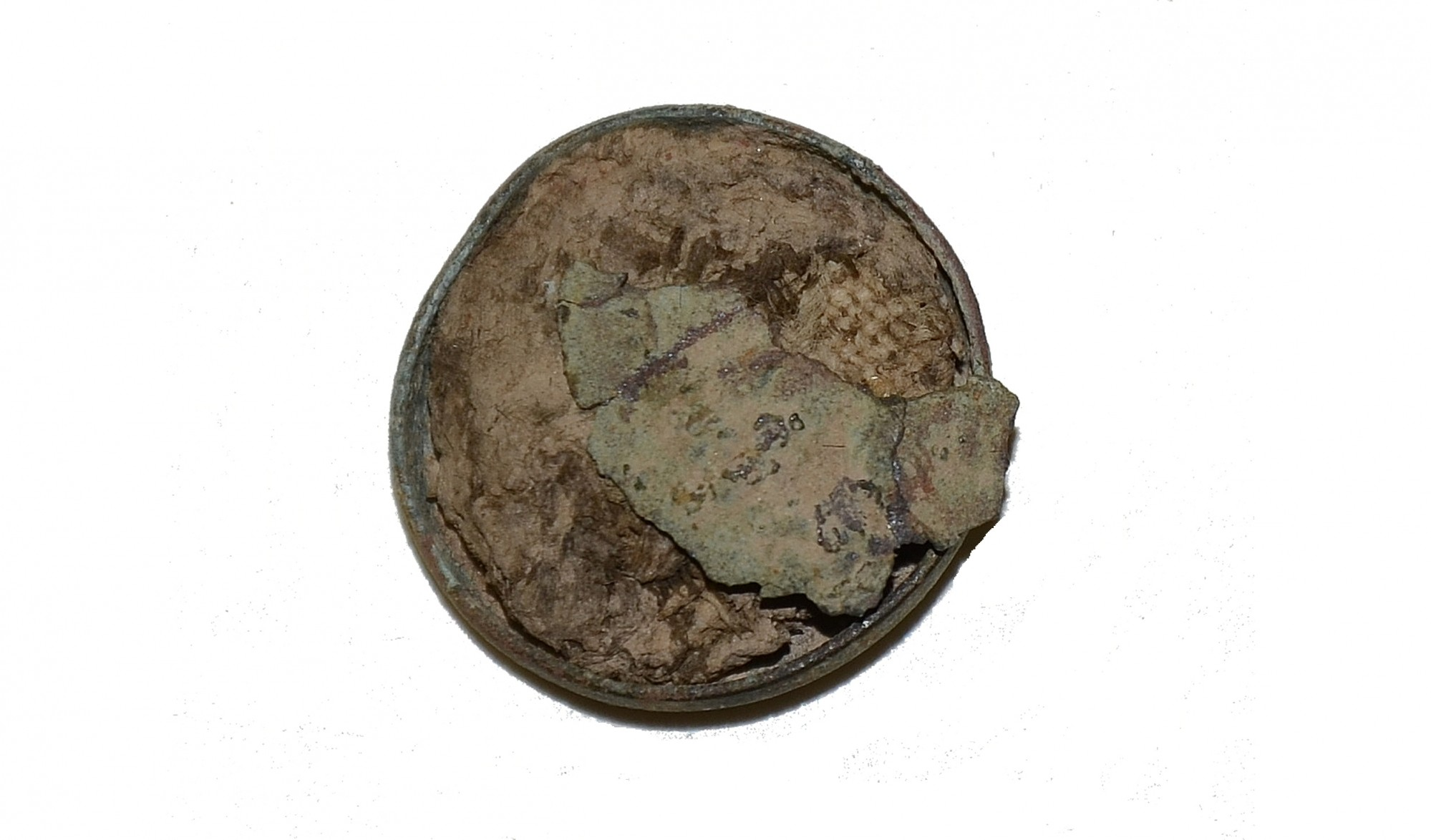 BUTTON SHELL FILLED WITH BUTTERNUT CLOTH FRAGMENTS