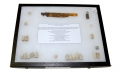 DISPLAY BOX OF RELICS FROM PICKETT'S CHARGE - ROSENSTEEL COLLECTION