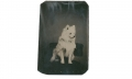 1/8 PLATE TINTYPE OF WHITE DOG