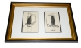 FRAMED C. J. PUGLIESE SWORD ENGRAVINGS