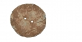 CARVED LEAD DISK RECOVERED FROM GETTYSBURG