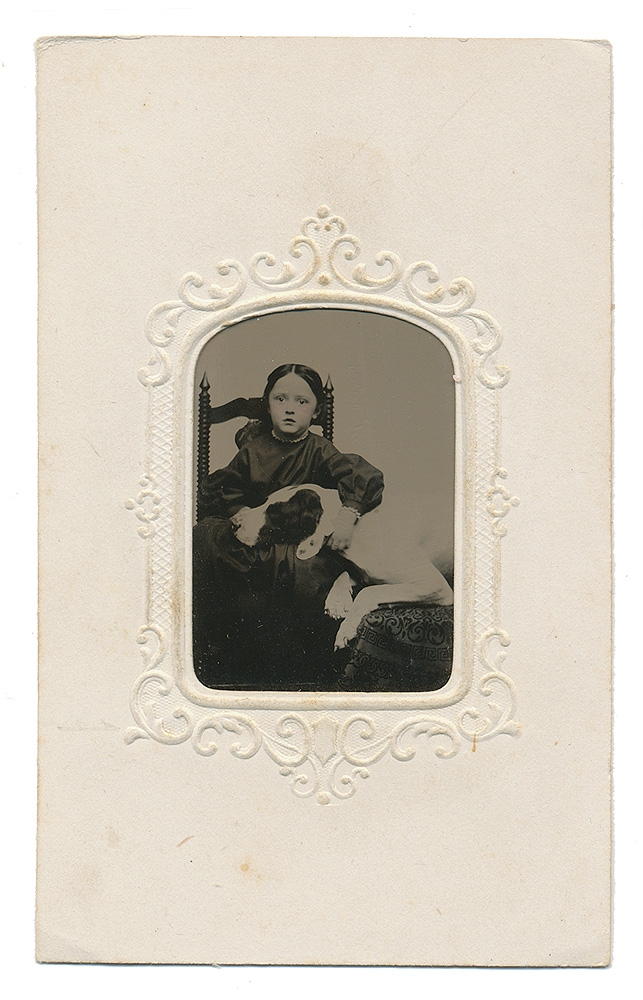 1/16 PLATE TINTYPE IN CDV MOUNT – YOUNG GIRL WITH A LARGE DOG