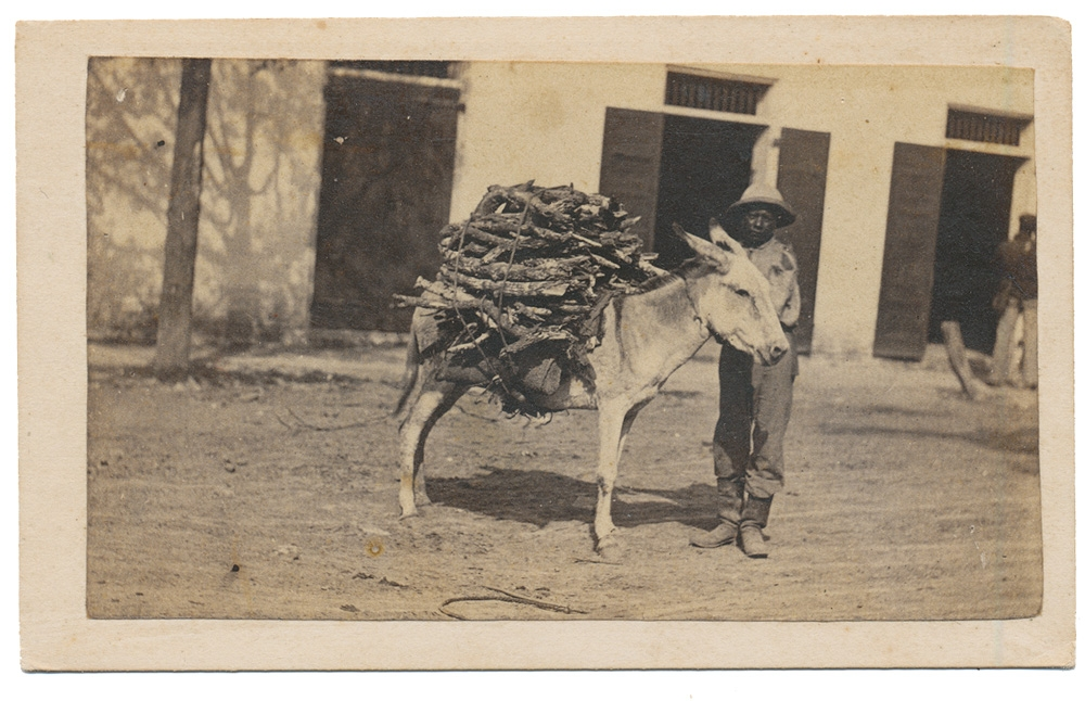 CDV MAN WITH A BURRO CARRYING A LOAD OF WOOD