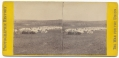STEREO CARD – CAMP OF 31ST PA INFANTRY, QUEEN'S FARM