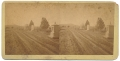 "GETTYSBURG STEREOVIEW – ""LOOKING TO ROUND TOP AND GRANITE SPUR"""