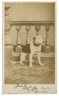 "CDV OF ""JACK"" THE DOG – MASCOT OF THE 102ND PENNSYLVANIA VOLUNTEERS"