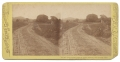 TIPTON STEREOVIEW OF THE COPSE OF TREES AT GETTYSBURG