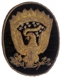 CIVIL WAR OFFICER'S BULLION EAGLE HAT INSIGNIA