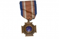 1881 SONS OF UNION VETERANS WAR SERVICE MEDAL